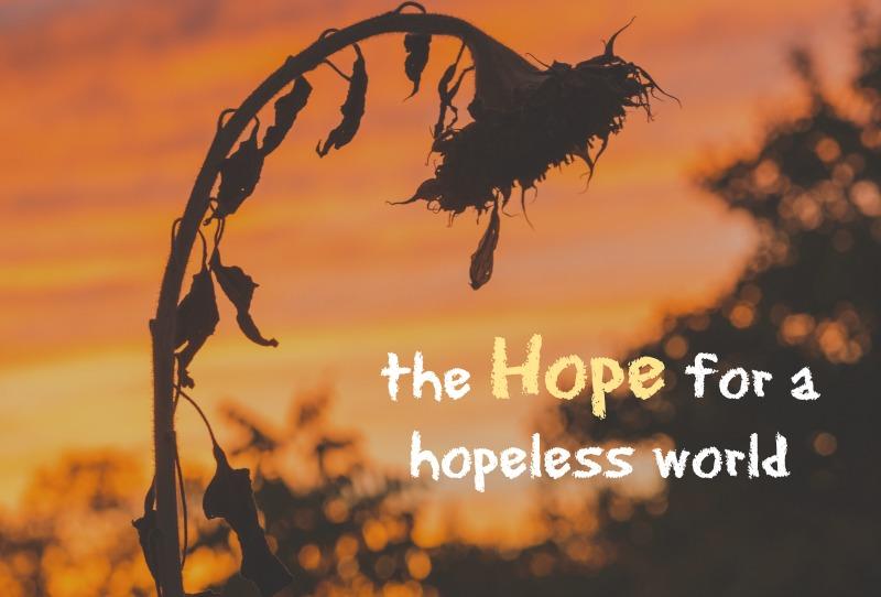 hope-for-a-hopeless