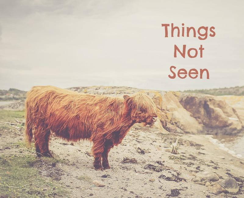 things-not-seen